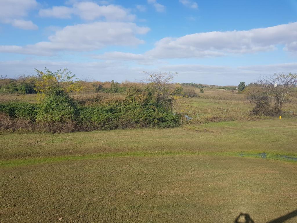 28 hectáreas sobre Ruta 5.- OPORTUNIDAD.-