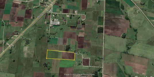 Campo de 5 hectáreas a 9 km de Canelones.-